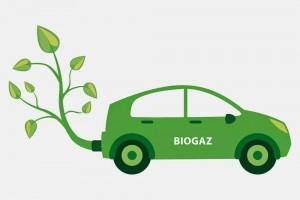 Le biométhane, favori pour décarboniser les transports