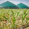 Biogaz : un or vert sous-exploité selon l'Agence Internationale de l'Energie