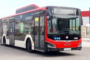 Bus hybrides gaz : MAN remporte le marché de Barcelone