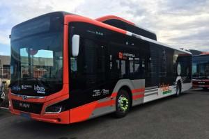 Des bus MAN hybride GNV pour la Métropole Aix Marseille Provence