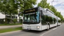 Le bus MAN Lion's City GNV élu « Bus of the Year  2015 »