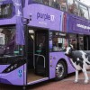 Angleterre : Reading Bus finalise la réception de ses 17 bus au biogaz