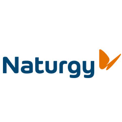 Naturgy (Gas Natural Fenosa)